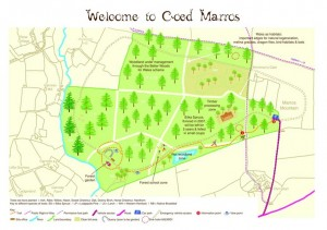 Coed Marros Co-operative site map