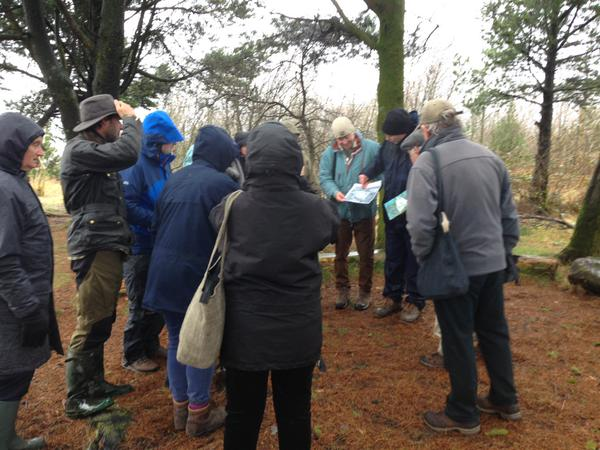 Beaufort Community woodland site visit 2
