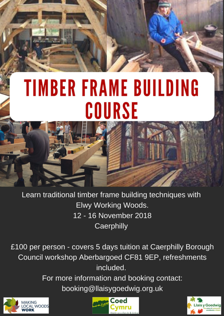 Timber Frame Building Course 12-16 November 2018 – Llais y